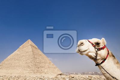 Постер Архитектура Постер 43400267, 30x20 см, на бумагеЕгипетские пирамиды<br>Постер на холсте или бумаге. Любого нужного вам размера. В раме или без. Подвес в комплекте. Трехслойная надежная упаковка. Доставим в любую точку России. Вам осталось только повесить картину на стену!<br>