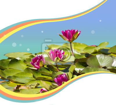 Постер Лилии Розовый waterlilies в пруд .Flowers фона для текстаЛилии<br>Постер на холсте или бумаге. Любого нужного вам размера. В раме или без. Подвес в комплекте. Трехслойная надежная упаковка. Доставим в любую точку России. Вам осталось только повесить картину на стену!<br>