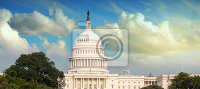 Постер Вашингтон Здание правительства с РастительностьюВашингтон<br>Постер на холсте или бумаге. Любого нужного вам размера. В раме или без. Подвес в комплекте. Трехслойная надежная упаковка. Доставим в любую точку России. Вам осталось только повесить картину на стену!<br>