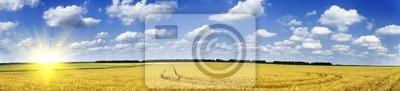 Постер Пейзаж равнинный Золотое пшеничное поле.Пейзаж равнинный<br>Постер на холсте или бумаге. Любого нужного вам размера. В раме или без. Подвес в комплекте. Трехслойная надежная упаковка. Доставим в любую точку России. Вам осталось только повесить картину на стену!<br>