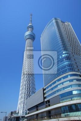 Постер Токио Tokyo sky tree, ЯпонияТокио<br>Постер на холсте или бумаге. Любого нужного вам размера. В раме или без. Подвес в комплекте. Трехслойная надежная упаковка. Доставим в любую точку России. Вам осталось только повесить картину на стену!<br>