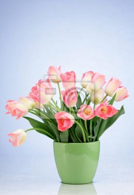 Постер Тюльпаны Букет розовых тюльпанов в вазе, изолированных на белом фонеТюльпаны<br>Постер на холсте или бумаге. Любого нужного вам размера. В раме или без. Подвес в комплекте. Трехслойная надежная упаковка. Доставим в любую точку России. Вам осталось только повесить картину на стену!<br>