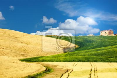 Постер Тоскана Типичный Тосканский пейзаж, ИталияТоскана<br>Постер на холсте или бумаге. Любого нужного вам размера. В раме или без. Подвес в комплекте. Трехслойная надежная упаковка. Доставим в любую точку России. Вам осталось только повесить картину на стену!<br>