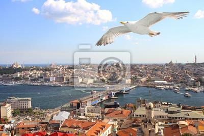 Птицы глазу вид на Стамбул, 30x20 см, на бумагеТурция<br>Постер на холсте или бумаге. Любого нужного вам размера. В раме или без. Подвес в комплекте. Трехслойная надежная упаковка. Доставим в любую точку России. Вам осталось только повесить картину на стену!<br>
