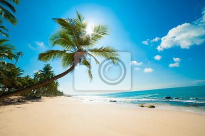 Постер Пейзаж морской Тропический пляжПейзаж морской<br>Постер на холсте или бумаге. Любого нужного вам размера. В раме или без. Подвес в комплекте. Трехслойная надежная упаковка. Доставим в любую точку России. Вам осталось только повесить картину на стену!<br>