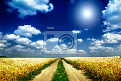 Постер Пейзаж равнинный Весело солнце, и поля, полные пшеницы.Пейзаж равнинный<br>Постер на холсте или бумаге. Любого нужного вам размера. В раме или без. Подвес в комплекте. Трехслойная надежная упаковка. Доставим в любую точку России. Вам осталось только повесить картину на стену!<br>