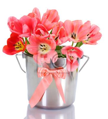 Постер Тюльпаны Красивые розовые тюльпаны в ведро, изолированных на белый.Тюльпаны<br>Постер на холсте или бумаге. Любого нужного вам размера. В раме или без. Подвес в комплекте. Трехслойная надежная упаковка. Доставим в любую точку России. Вам осталось только повесить картину на стену!<br>