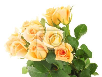 Постер Розы Красивый букет из роз, изолированных на беломРозы<br>Постер на холсте или бумаге. Любого нужного вам размера. В раме или без. Подвес в комплекте. Трехслойная надежная упаковка. Доставим в любую точку России. Вам осталось только повесить картину на стену!<br>