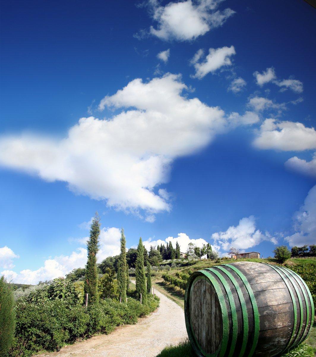 Постер Тоскана Кьянти виноградник пейзаж в Тоскане, ИталияТоскана<br>Постер на холсте или бумаге. Любого нужного вам размера. В раме или без. Подвес в комплекте. Трехслойная надежная упаковка. Доставим в любую точку России. Вам осталось только повесить картину на стену!<br>