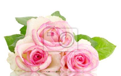 Постер Розы Красивый букет из розовых роз, изолированных на беломРозы<br>Постер на холсте или бумаге. Любого нужного вам размера. В раме или без. Подвес в комплекте. Трехслойная надежная упаковка. Доставим в любую точку России. Вам осталось только повесить картину на стену!<br>