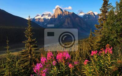 Постер Канада Живописные пустыне в Национальный парк Банф, Альберта, КанадаКанада<br>Постер на холсте или бумаге. Любого нужного вам размера. В раме или без. Подвес в комплекте. Трехслойная надежная упаковка. Доставим в любую точку России. Вам осталось только повесить картину на стену!<br>