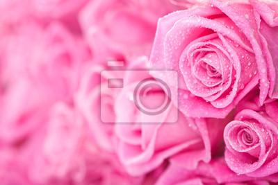 Розовые розы, 30x20 см, на бумагеРозы<br>Постер на холсте или бумаге. Любого нужного вам размера. В раме или без. Подвес в комплекте. Трехслойная надежная упаковка. Доставим в любую точку России. Вам осталось только повесить картину на стену!<br>