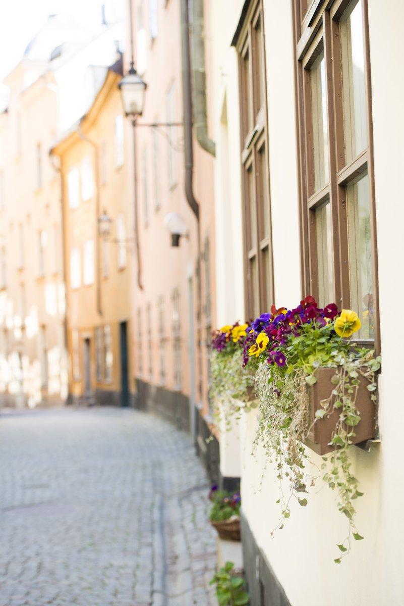 Постер Стокгольм Улица в старом городе СтокгольмаСтокгольм<br>Постер на холсте или бумаге. Любого нужного вам размера. В раме или без. Подвес в комплекте. Трехслойная надежная упаковка. Доставим в любую точку России. Вам осталось только повесить картину на стену!<br>