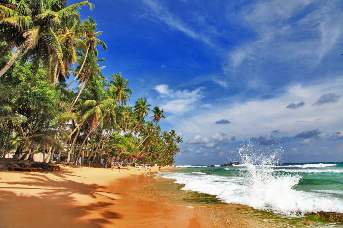 Постер Лето Дикие красивых пляжей Шри-ЛанкиЛето<br>Постер на холсте или бумаге. Любого нужного вам размера. В раме или без. Подвес в комплекте. Трехслойная надежная упаковка. Доставим в любую точку России. Вам осталось только повесить картину на стену!<br>