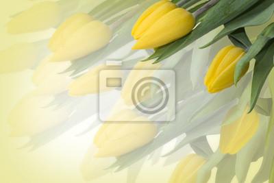 Постер Тюльпаны Желтые тюльпаныТюльпаны<br>Постер на холсте или бумаге. Любого нужного вам размера. В раме или без. Подвес в комплекте. Трехслойная надежная упаковка. Доставим в любую точку России. Вам осталось только повесить картину на стену!<br>