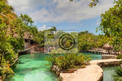 Постер Мехико Идиллические пейзажи Карибского Майя в джунглях МексикиМехико<br>Постер на холсте или бумаге. Любого нужного вам размера. В раме или без. Подвес в комплекте. Трехслойная надежная упаковка. Доставим в любую точку России. Вам осталось только повесить картину на стену!<br>