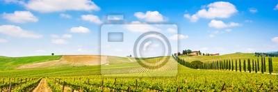 Постер Тоскана Тосканский пейзаж панорама с виноградника, региона Кьянти, ИталияТоскана<br>Постер на холсте или бумаге. Любого нужного вам размера. В раме или без. Подвес в комплекте. Трехслойная надежная упаковка. Доставим в любую точку России. Вам осталось только повесить картину на стену!<br>