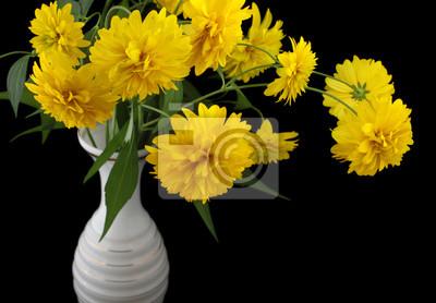 Постер Рудбекии Рудбекии цветы в вазу на черном iosolatedРудбекии<br>Постер на холсте или бумаге. Любого нужного вам размера. В раме или без. Подвес в комплекте. Трехслойная надежная упаковка. Доставим в любую точку России. Вам осталось только повесить картину на стену!<br>
