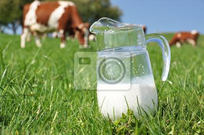 Кувшин молока от стада коров. Эмменталь области, Швейцария, 30x20 см, на бумагеКоровы<br>Постер на холсте или бумаге. Любого нужного вам размера. В раме или без. Подвес в комплекте. Трехслойная надежная упаковка. Доставим в любую точку России. Вам осталось только повесить картину на стену!<br>