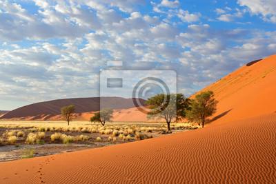 Постер Африканский пейзаж ПейзажАфриканский пейзаж<br>Постер на холсте или бумаге. Любого нужного вам размера. В раме или без. Подвес в комплекте. Трехслойная надежная упаковка. Доставим в любую точку России. Вам осталось только повесить картину на стену!<br>