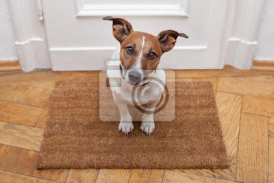 Постер Собаки Собаки добро пожаловать домойСобаки<br>Постер на холсте или бумаге. Любого нужного вам размера. В раме или без. Подвес в комплекте. Трехслойная надежная упаковка. Доставим в любую точку России. Вам осталось только повесить картину на стену!<br>
