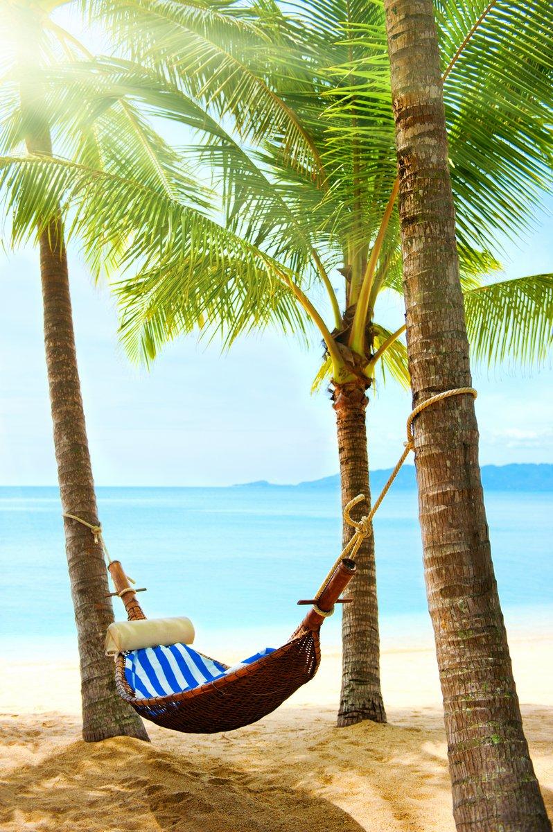 Постер Мексика Красивый тропический пляж с пальмы и песокМексика<br>Постер на холсте или бумаге. Любого нужного вам размера. В раме или без. Подвес в комплекте. Трехслойная надежная упаковка. Доставим в любую точку России. Вам осталось только повесить картину на стену!<br>