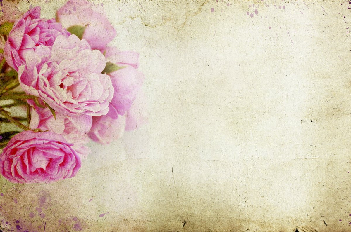 Vintage rose desktop background