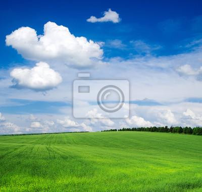 Постер Пейзаж равнинный Зеленое полеПейзаж равнинный<br>Постер на холсте или бумаге. Любого нужного вам размера. В раме или без. Подвес в комплекте. Трехслойная надежная упаковка. Доставим в любую точку России. Вам осталось только повесить картину на стену!<br>