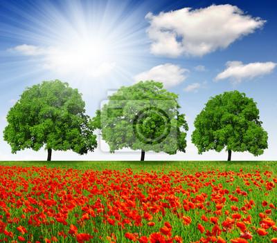 Постер Маки Весной деревья с красным макомМаки<br>Постер на холсте или бумаге. Любого нужного вам размера. В раме или без. Подвес в комплекте. Трехслойная надежная упаковка. Доставим в любую точку России. Вам осталось только повесить картину на стену!<br>