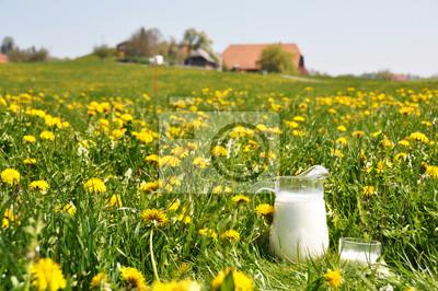 Постер Одуванчики Кувшин молока на весенний луг. Эмменталь области, ШвейцарияОдуванчики<br>Постер на холсте или бумаге. Любого нужного вам размера. В раме или без. Подвес в комплекте. Трехслойная надежная упаковка. Доставим в любую точку России. Вам осталось только повесить картину на стену!<br>
