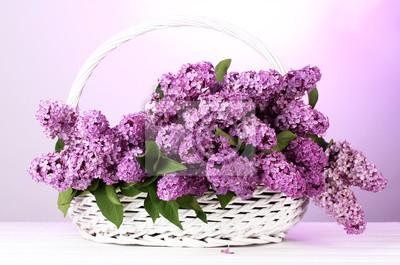 Красивая Сирень цветы в корзине на фиолетовом фоне, 30x20 см, на бумагеСирень<br>Постер на холсте или бумаге. Любого нужного вам размера. В раме или без. Подвес в комплекте. Трехслойная надежная упаковка. Доставим в любую точку России. Вам осталось только повесить картину на стену!<br>
