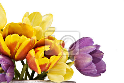 Постер Тюльпаны Тюльпаны разных цветовТюльпаны<br>Постер на холсте или бумаге. Любого нужного вам размера. В раме или без. Подвес в комплекте. Трехслойная надежная упаковка. Доставим в любую точку России. Вам осталось только повесить картину на стену!<br>