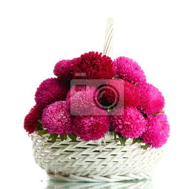 Постер Астры Розовый aster цветы в корзине, изолированных на беломАстры<br>Постер на холсте или бумаге. Любого нужного вам размера. В раме или без. Подвес в комплекте. Трехслойная надежная упаковка. Доставим в любую точку России. Вам осталось только повесить картину на стену!<br>