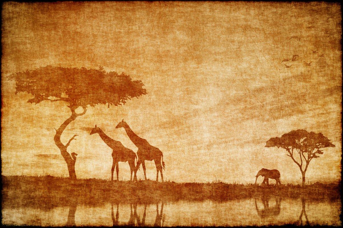 Постер Кения Сафари в Африке, опираясь на ald бумаги Кения<br>Постер на холсте или бумаге. Любого нужного вам размера. В раме или без. Подвес в комплекте. Трехслойная надежная упаковка. Доставим в любую точку России. Вам осталось только повесить картину на стену!<br>