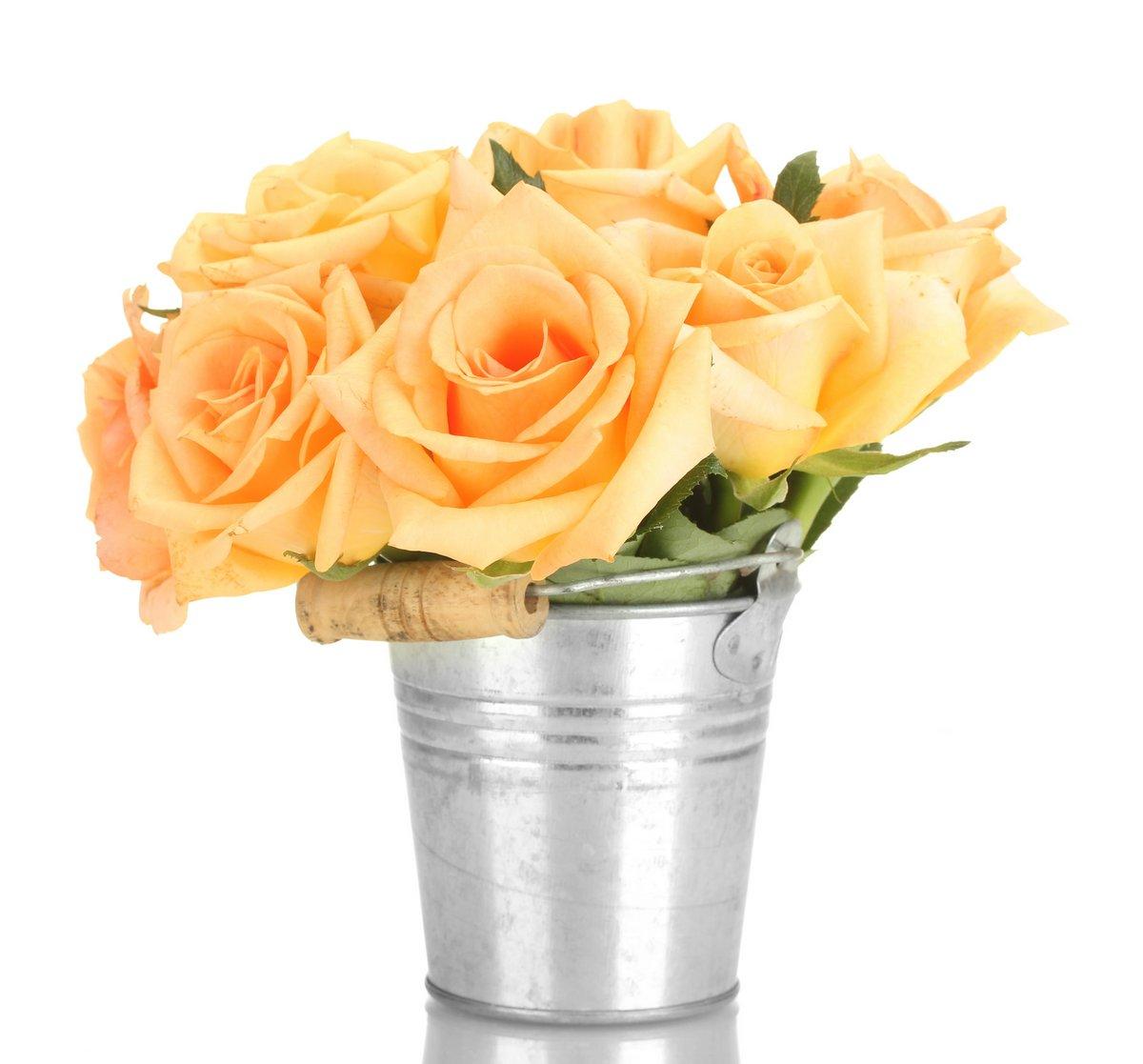 Постер Розы Красивый букет роз в ведро, изолированных на белый.Розы<br>Постер на холсте или бумаге. Любого нужного вам размера. В раме или без. Подвес в комплекте. Трехслойная надежная упаковка. Доставим в любую точку России. Вам осталось только повесить картину на стену!<br>