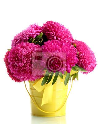 Постер Астры Розовый aster цветы в емкости, изолированной на беломАстры<br>Постер на холсте или бумаге. Любого нужного вам размера. В раме или без. Подвес в комплекте. Трехслойная надежная упаковка. Доставим в любую точку России. Вам осталось только повесить картину на стену!<br>