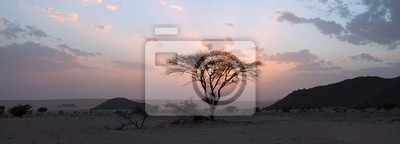 Постер Марокко Дерево в пустыне сахара, закатМарокко<br>Постер на холсте или бумаге. Любого нужного вам размера. В раме или без. Подвес в комплекте. Трехслойная надежная упаковка. Доставим в любую точку России. Вам осталось только повесить картину на стену!<br>