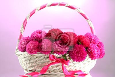 Постер Астры Красивые aster цветы в корзине, на розовом фонеАстры<br>Постер на холсте или бумаге. Любого нужного вам размера. В раме или без. Подвес в комплекте. Трехслойная надежная упаковка. Доставим в любую точку России. Вам осталось только повесить картину на стену!<br>