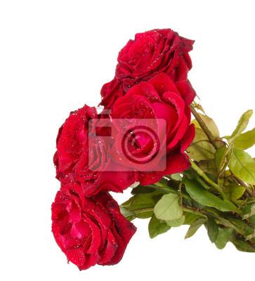 Постер Розы Красивый букет из красных роз, изолированных на беломРозы<br>Постер на холсте или бумаге. Любого нужного вам размера. В раме или без. Подвес в комплекте. Трехслойная надежная упаковка. Доставим в любую точку России. Вам осталось только повесить картину на стену!<br>