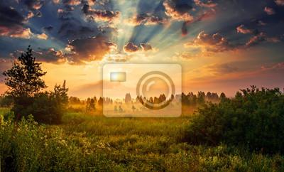 Постер Пейзаж равнинный Пейзаж, Солнечный рассвет в полеПейзаж равнинный<br>Постер на холсте или бумаге. Любого нужного вам размера. В раме или без. Подвес в комплекте. Трехслойная надежная упаковка. Доставим в любую точку России. Вам осталось только повесить картину на стену!<br>