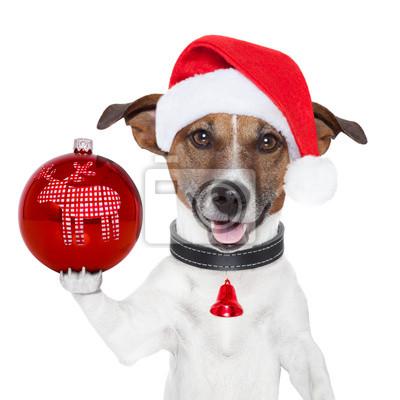 Санта-собака с Рождественский бал на лапу, 20x20 см, на бумаге12.31 Новый Год<br>Постер на холсте или бумаге. Любого нужного вам размера. В раме или без. Подвес в комплекте. Трехслойная надежная упаковка. Доставим в любую точку России. Вам осталось только повесить картину на стену!<br>