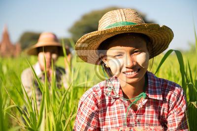 Постер Мьянма (Бирма) Бирманские женщины фермерМьянма (Бирма)<br>Постер на холсте или бумаге. Любого нужного вам размера. В раме или без. Подвес в комплекте. Трехслойная надежная упаковка. Доставим в любую точку России. Вам осталось только повесить картину на стену!<br>