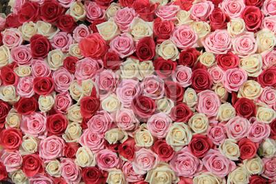 Постер Цветы Белые и розовые розы в организации, 30x20 см, на бумагеРозы<br>Постер на холсте или бумаге. Любого нужного вам размера. В раме или без. Подвес в комплекте. Трехслойная надежная упаковка. Доставим в любую точку России. Вам осталось только повесить картину на стену!<br>