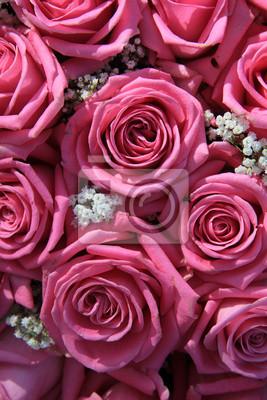 Постер Розы