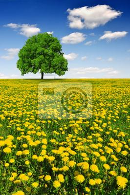 Постер Одуванчики Весной дерево на поле одуванчиковОдуванчики<br>Постер на холсте или бумаге. Любого нужного вам размера. В раме или без. Подвес в комплекте. Трехслойная надежная упаковка. Доставим в любую точку России. Вам осталось только повесить картину на стену!<br>