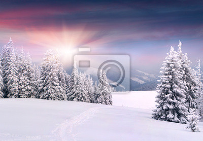 Постер Горы Красивый зимний пейзаж в горах. Восход солнцаГоры<br>Постер на холсте или бумаге. Любого нужного вам размера. В раме или без. Подвес в комплекте. Трехслойная надежная упаковка. Доставим в любую точку России. Вам осталось только повесить картину на стену!<br>