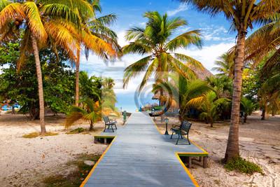 Постер Куба Путь, ведущий к тропическом пляже Варадеро на КубеКуба<br>Постер на холсте или бумаге. Любого нужного вам размера. В раме или без. Подвес в комплекте. Трехслойная надежная упаковка. Доставим в любую точку России. Вам осталось только повесить картину на стену!<br>