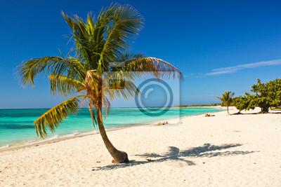 Постер Куба Карибский Остров Рай , КубаКуба<br>Постер на холсте или бумаге. Любого нужного вам размера. В раме или без. Подвес в комплекте. Трехслойная надежная упаковка. Доставим в любую точку России. Вам осталось только повесить картину на стену!<br>