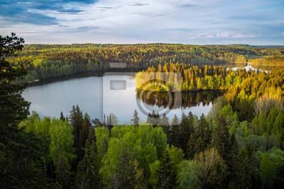 Постер Страны Вид на озеро в Финляндии, 30x20 см, на бумагеФинляндия<br>Постер на холсте или бумаге. Любого нужного вам размера. В раме или без. Подвес в комплекте. Трехслойная надежная упаковка. Доставим в любую точку России. Вам осталось только повесить картину на стену!<br>
