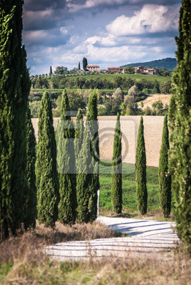 Постер Тоскана Тосканский пейзажТоскана<br>Постер на холсте или бумаге. Любого нужного вам размера. В раме или без. Подвес в комплекте. Трехслойная надежная упаковка. Доставим в любую точку России. Вам осталось только повесить картину на стену!<br>